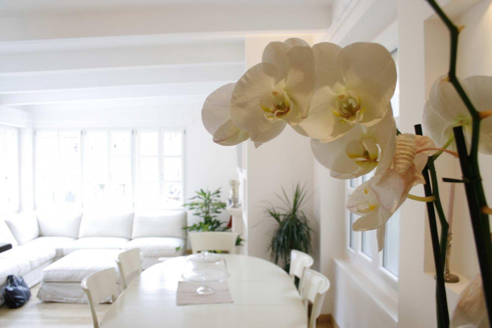 Casa stile classico rp ristrutturazioni e arredamenti - Casa stile classico ...